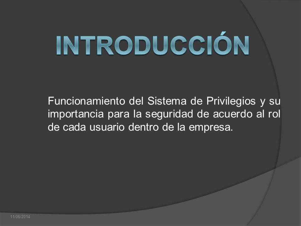 Funcionamiento del Sistema de Privilegios y su importancia para la seguridad de acuerdo al rol de cada usuario dentro de la empresa. 11/06/2014