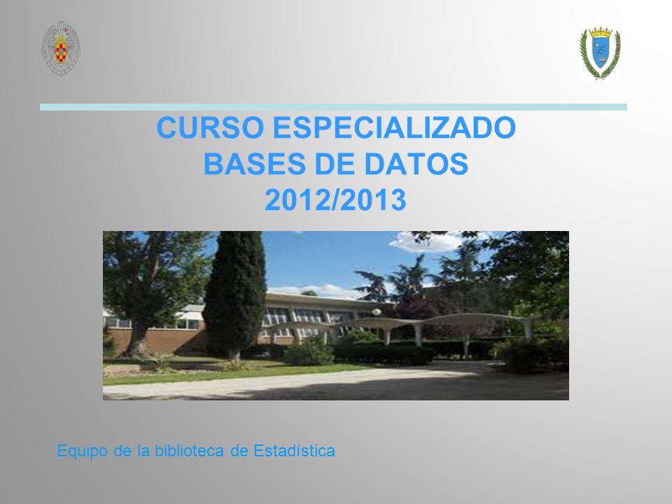 CURSO ESPECIALIZADO BASES DE DATOS 2012/2013 Equipo de la biblioteca de Estadística