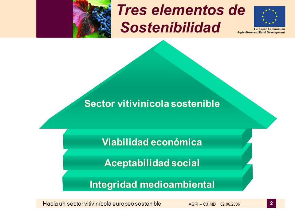 Hacia un sector vitivinícola europeo sostenible AGRI – C3 MD 02.06.2006 2 Tres elementos de Sostenibilidad Integridad medioambiental Aceptabilidad soc