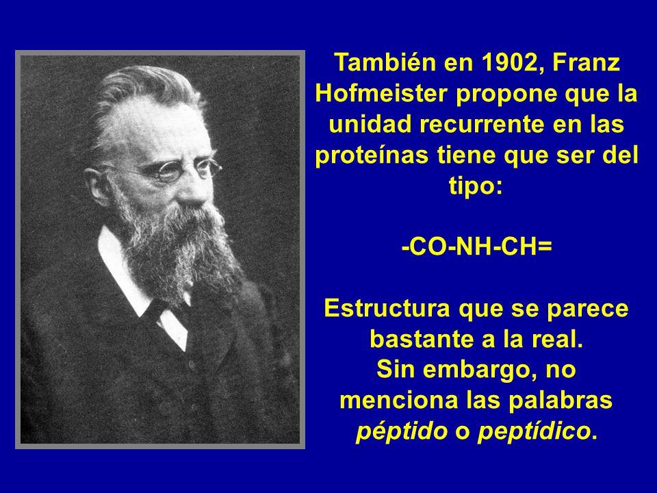 También en 1902, Franz Hofmeister propone que la unidad recurrente en las proteínas tiene que ser del tipo: -CO-NH-CH= Estructura que se parece bastan