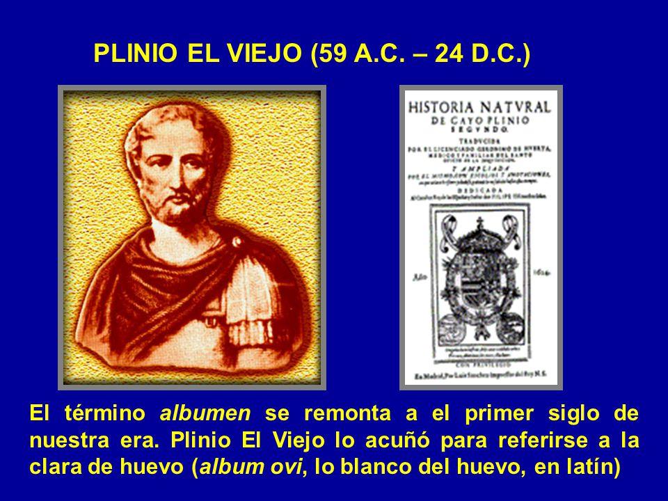 PLINIO EL VIEJO (59 A.C. – 24 D.C.) El término albumen se remonta a el primer siglo de nuestra era. Plinio El Viejo lo acuñó para referirse a la clara