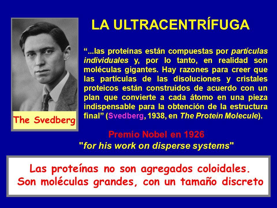 LA ULTRACENTRÍFUGA...las proteínas están compuestas por partículas individuales y, por lo tanto, en realidad son moléculas gigantes. Hay razones para