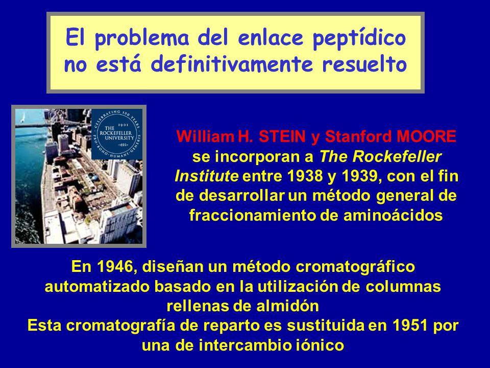 El problema del enlace peptídico no está definitivamente resuelto William H. STEIN y Stanford MOORE se incorporan a The Rockefeller Institute entre 19