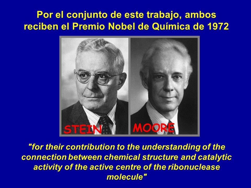 Por el conjunto de este trabajo, ambos reciben el Premio Nobel de Química de 1972