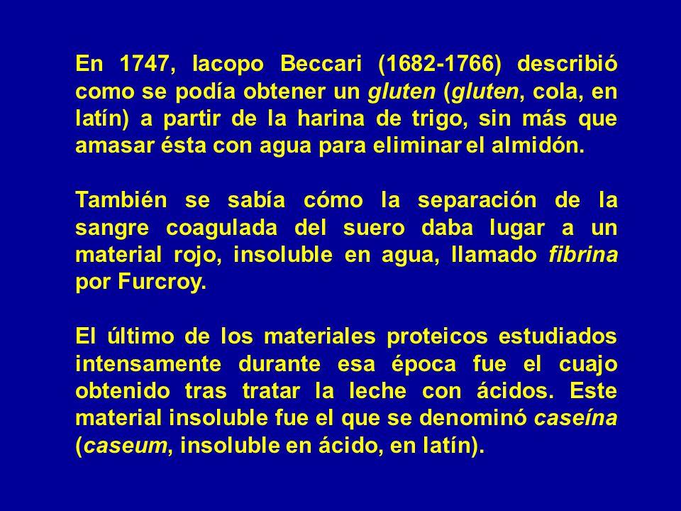 En 1747, Iacopo Beccari (1682-1766) describió como se podía obtener un gluten (gluten, cola, en latín) a partir de la harina de trigo, sin más que ama