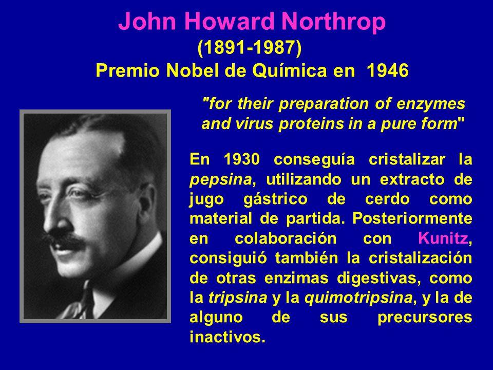 John Howard Northrop (1891-1987) Premio Nobel de Química en 1946