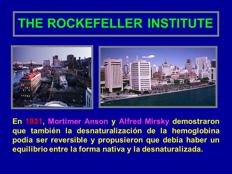 En 1931, Mortimer Anson y Alfred Mirsky demostraron que también la desnaturalización de la hemoglobina podía ser reversible y propusieron que debía ha
