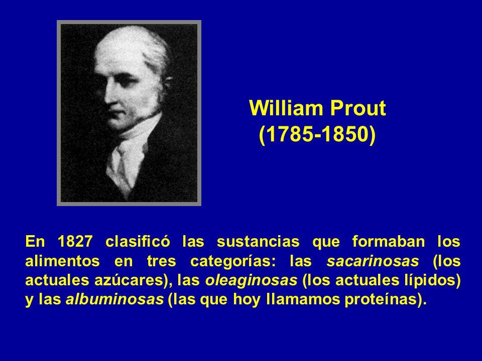William Prout (1785-1850) En 1827 clasificó las sustancias que formaban los alimentos en tres categorías: las sacarinosas (los actuales azúcares), las