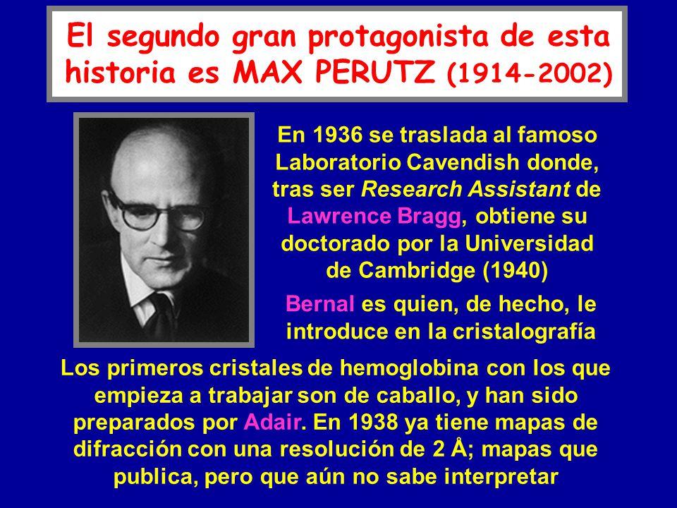 El segundo gran protagonista de esta historia es MAX PERUTZ (1914-2002) En 1936 se traslada al famoso Laboratorio Cavendish donde, tras ser Research A