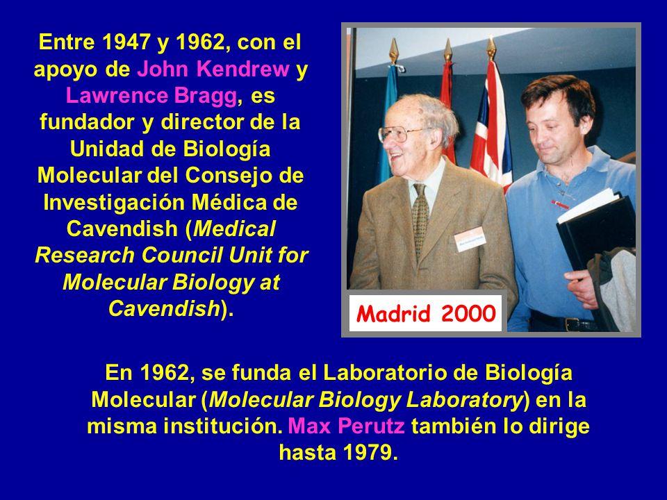 Entre 1947 y 1962, con el apoyo de John Kendrew y Lawrence Bragg, es fundador y director de la Unidad de Biología Molecular del Consejo de Investigaci