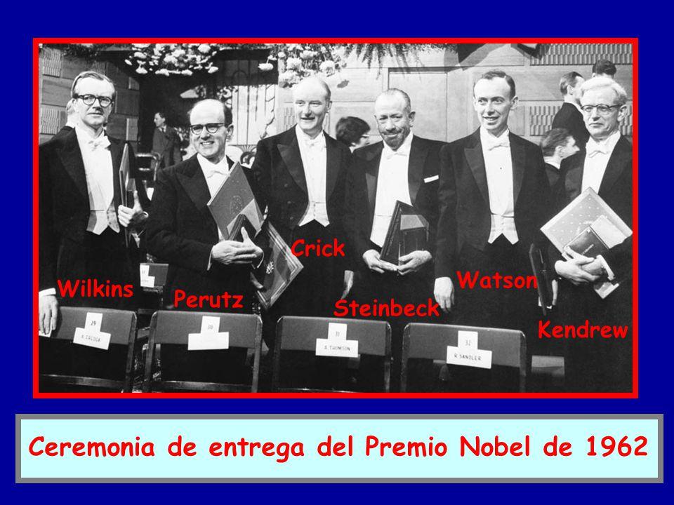 Ceremonia de entrega del Premio Nobel de 1962 Wilkins Perutz Crick Steinbeck Watson Kendrew