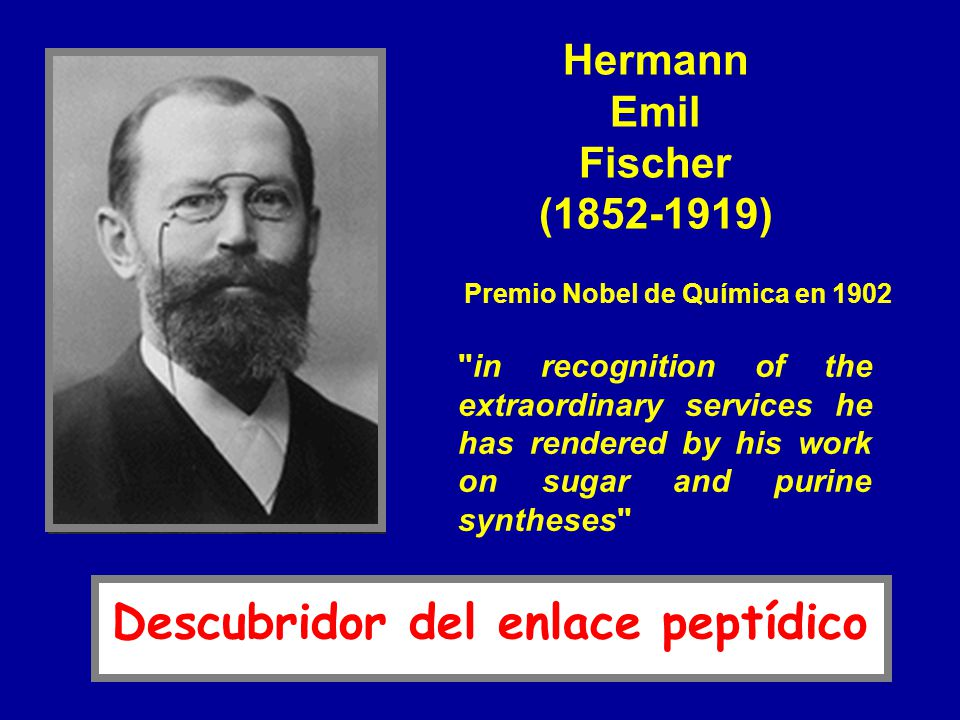 in recognition of the extraordinary services he has rendered by his work on sugar and purine syntheses Hermann Emil Fischer (1852-1919) Premio Nobel de Química en 1902 Descubridor del enlace peptídico