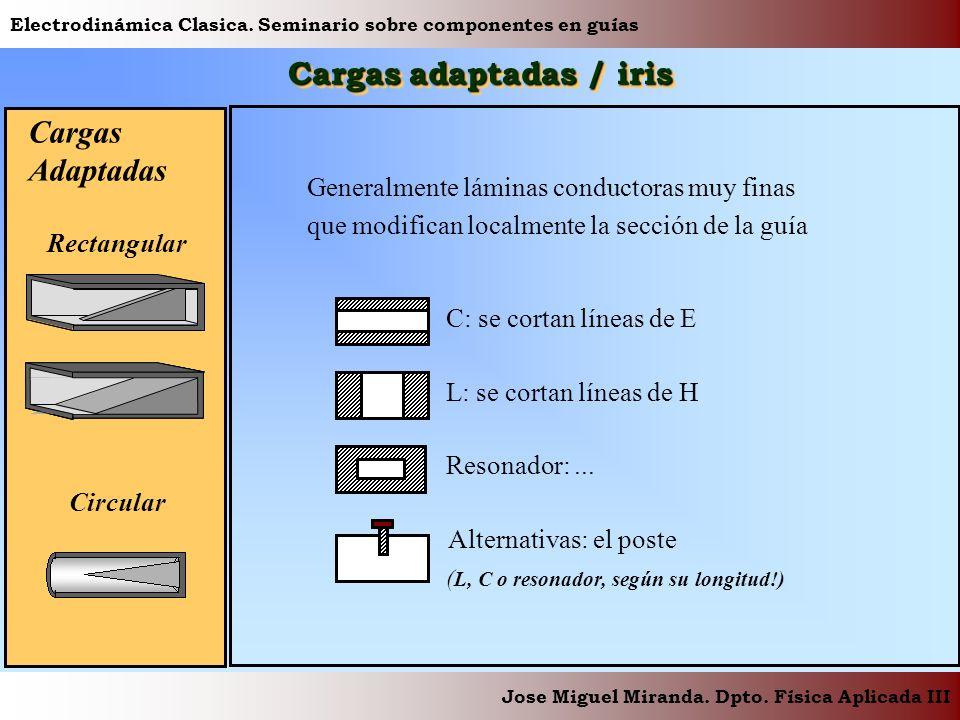 Electrodinámica Clasica. Seminario sobre componentes en guías Jose Miguel Miranda. Dpto. Física Aplicada III Cargas adaptadas / iris Circular Rectangu