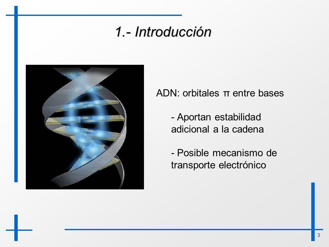 3 1.- Introducción ADN: orbitales π entre bases - Aportan estabilidad adicional a la cadena - Posible mecanismo de transporte electrónico