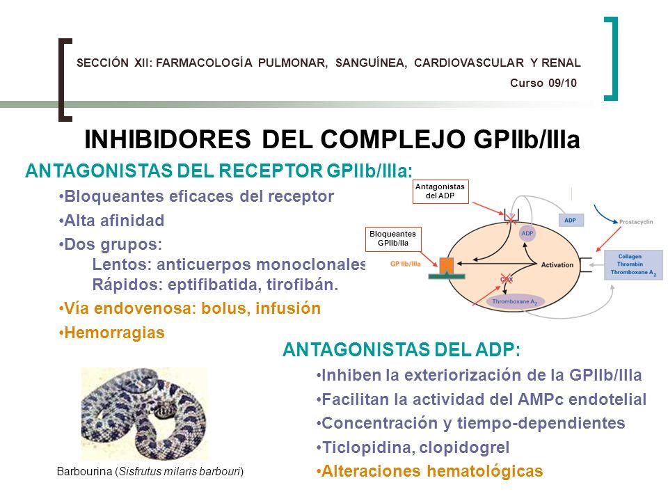 INHIBIDORES DEL COMPLEJO GPIIb/IIIa ANTAGONISTAS DEL RECEPTOR GPIIb/IIIa: Bloqueantes eficaces del receptor Alta afinidad Dos grupos: Lentos: anticuer