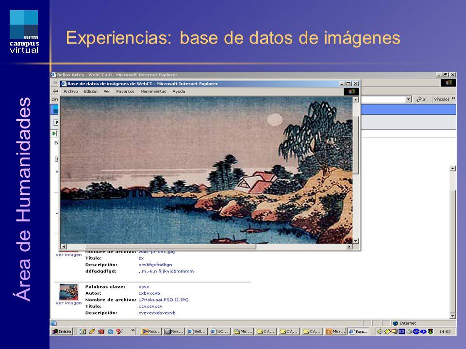 1ª JORNADA CAMPUS VIRTUAL UCM 6 de Mayo de 2004 Experiencias: base de datos de imágenes