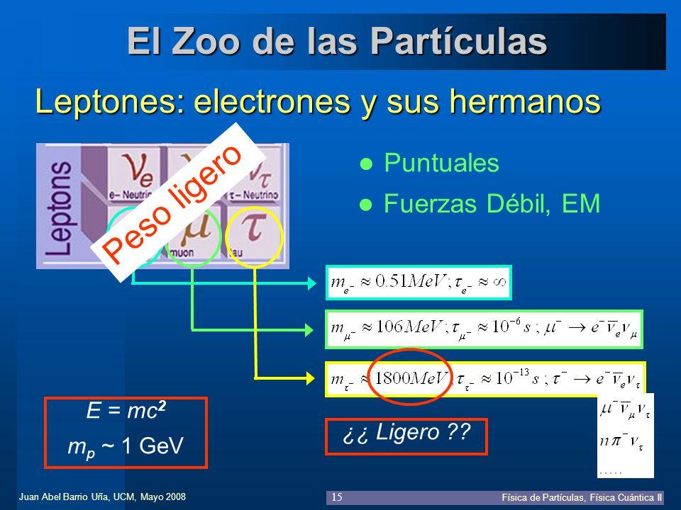 Juan Abel Barrio Uña, UCM, Mayo 2008 Física de Partículas, Física Cuántica II 15 El Zoo de las Partículas Leptones: electrones y sus hermanos Puntuale