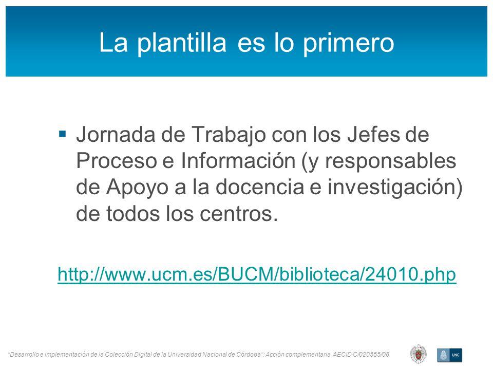Desarrollo e implementación de la Colección Digital de la Universidad Nacional de Córdoba: Acción complementaria AECID C/020555/08 La plantilla es lo
