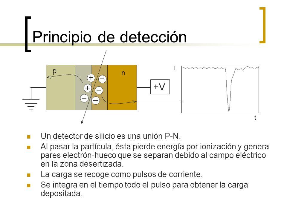 Principio de detección p n +V Un detector de silicio es una unión P-N. Al pasar la partícula, ésta pierde energía por ionización y genera pares electr