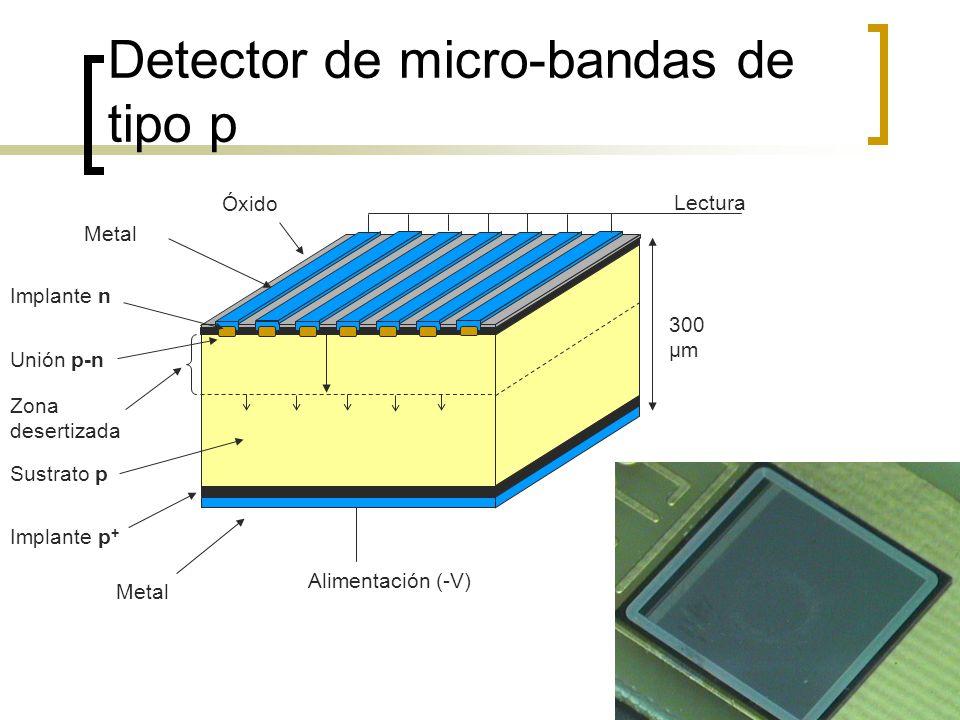 Detector de micro-bandas de tipo p Sustrato p Implante p + Metal Implante n Metal Óxido 300 μm Alimentación (-V) Lectura Unión p-n Zona desertizada