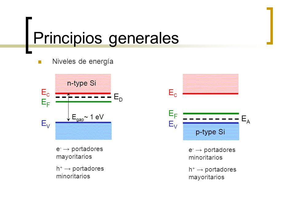 Principios generales e - portadores minoritarios h + portadores mayoritarios Niveles de energía e - portadores mayoritarios h + portadores minoritario