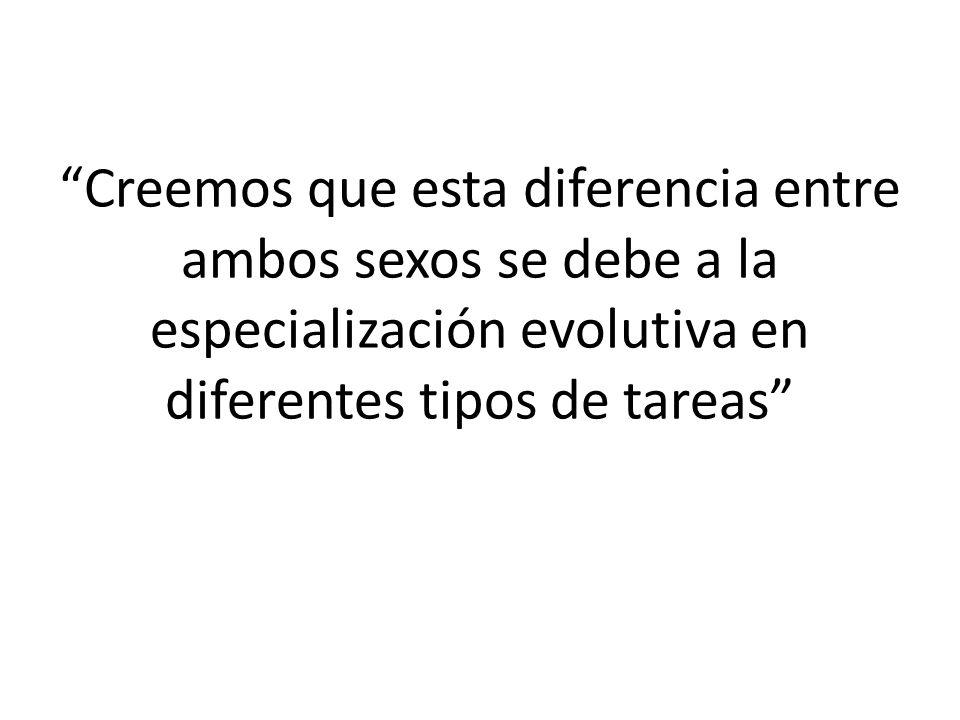 Creemos que esta diferencia entre ambos sexos se debe a la especialización evolutiva en diferentes tipos de tareas