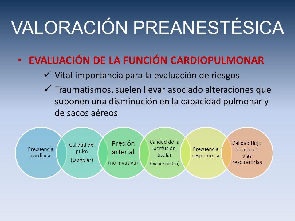 VALORACIÓN PREANESTÉSICA EVALUACIÓN DE LA FUNCIÓN CARDIOPULMONAR Vital importancia para la evaluación de riesgos Traumatismos, suelen llevar asociado alteraciones que suponen una disminución en la capacidad pulmonar y de sacos aéreos Frecuencia cardiaca Calidad del pulso (Doppler) Presión arterial (no invasiva) Calidad de la perfusión tisular ( pulsioximetría ) Frecuencia respiratoria Calidad flujo de aire en vías respiratorias