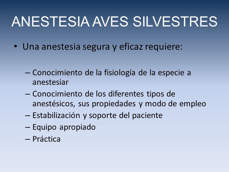 Una anestesia segura y eficaz requiere: – Conocimiento de la fisiología de la especie a anestesiar – Conocimiento de los diferentes tipos de anestésicos, sus propiedades y modo de empleo – Estabilización y soporte del paciente – Equipo apropiado – Práctica ANESTESIA AVES SILVESTRES
