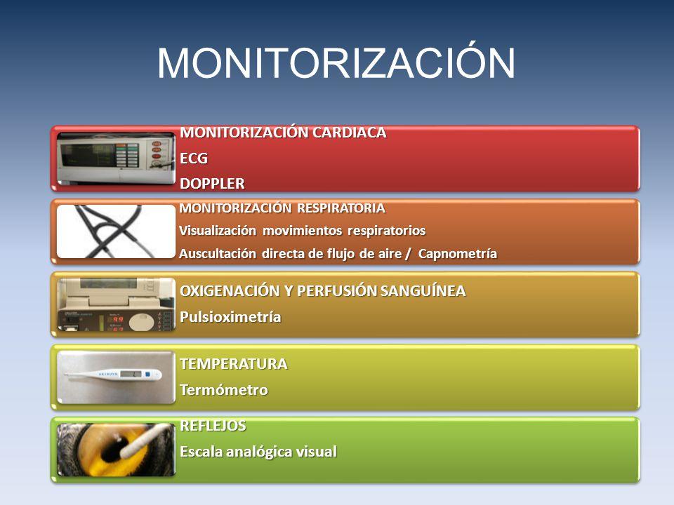 MONITORIZACIÓN CARDIACA ECGDOPPLER MONITORIZACIÓN RESPIRATORIA Visualización movimientos respiratorios Auscultación directa de flujo de aire / Capnometría OXIGENACIÓN Y PERFUSIÓN SANGUÍNEA Pulsioximetría TEMPERATURATermómetro REFLEJOS Escala analógica visual