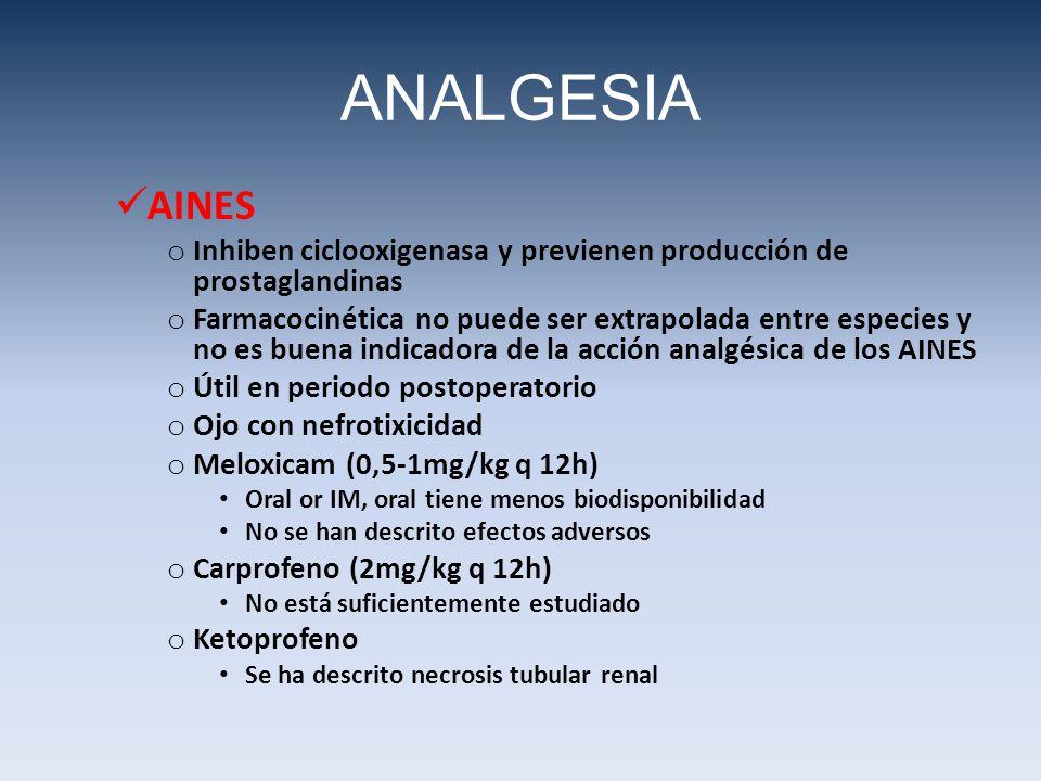 AINES o Inhiben ciclooxigenasa y previenen producción de prostaglandinas o Farmacocinética no puede ser extrapolada entre especies y no es buena indic