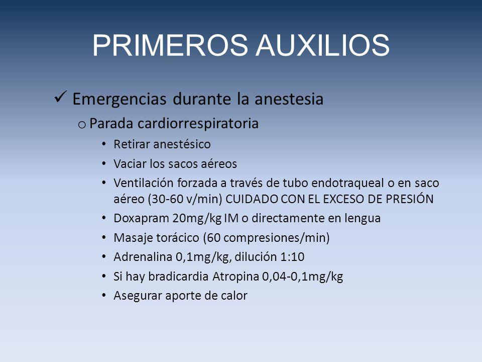 Emergencias durante la anestesia o Parada cardiorrespiratoria Retirar anestésico Vaciar los sacos aéreos Ventilación forzada a través de tubo endotraqueal o en saco aéreo (30-60 v/min) CUIDADO CON EL EXCESO DE PRESIÓN Doxapram 20mg/kg IM o directamente en lengua Masaje torácico (60 compresiones/min) Adrenalina 0,1mg/kg, dilución 1:10 Si hay bradicardia Atropina 0,04-0,1mg/kg Asegurar aporte de calor PRIMEROS AUXILIOS