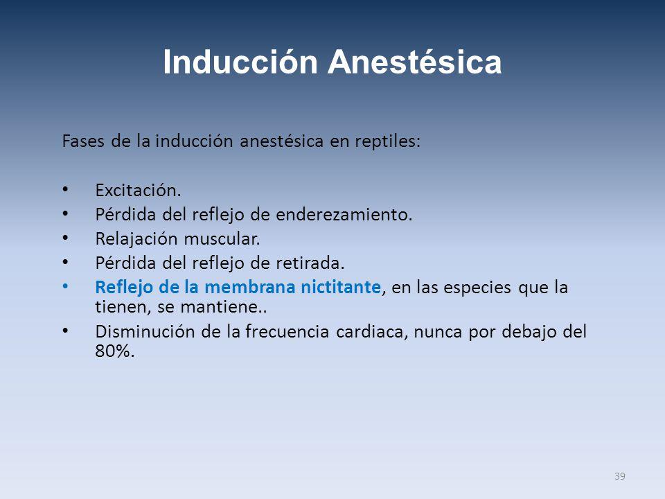 Inducción Anestésica Fases de la inducción anestésica en reptiles: Excitación. Pérdida del reflejo de enderezamiento. Relajación muscular. Pérdida del