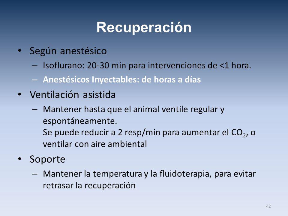 Recuperación Según anestésico – Isoflurano: 20-30 min para intervenciones de <1 hora. – Anestésicos Inyectables: de horas a días Ventilación asistida