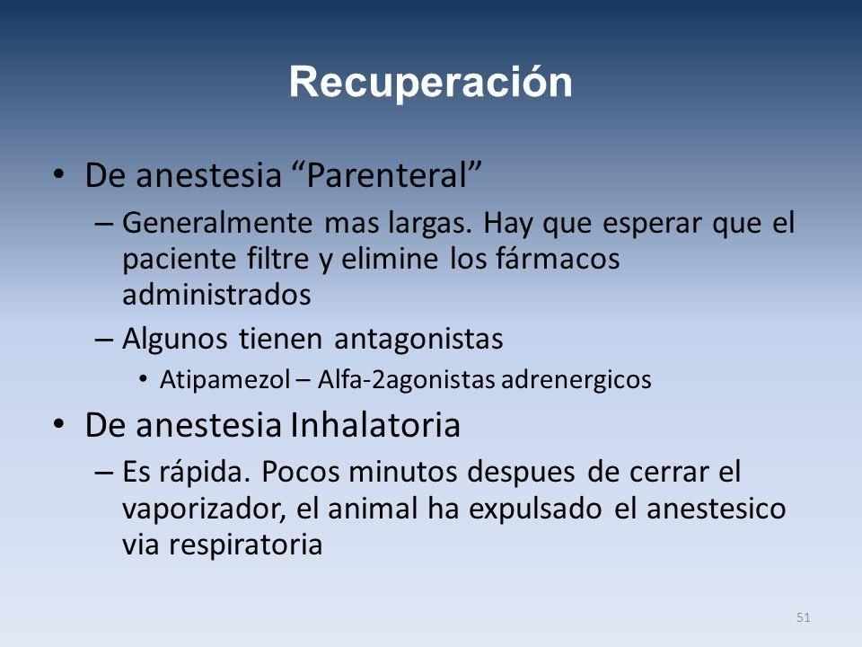 Recuperación De anestesia Parenteral – Generalmente mas largas. Hay que esperar que el paciente filtre y elimine los fármacos administrados – Algunos