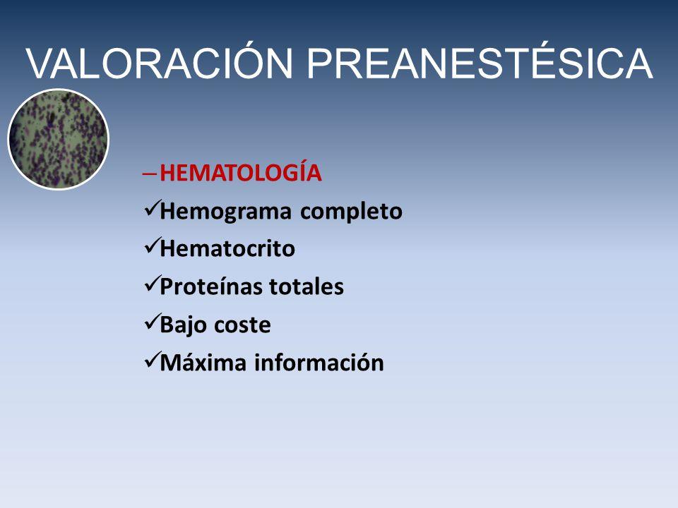 VALORACIÓN PREANESTÉSICA – HEMATOLOGÍA Hemograma completo Hematocrito Proteínas totales Bajo coste Máxima información