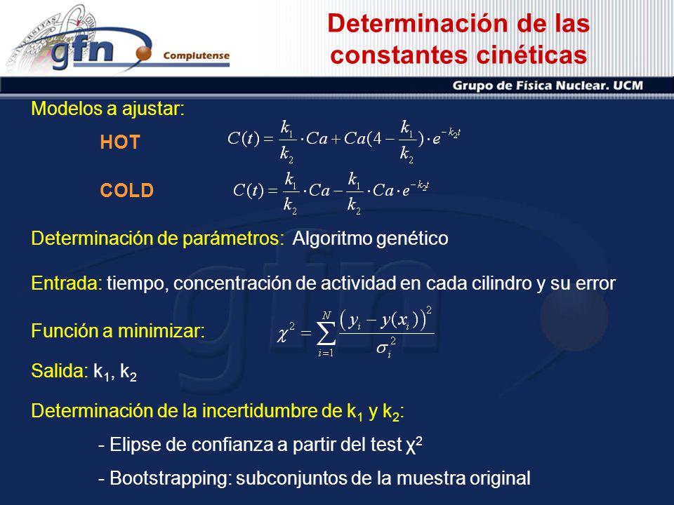 Determinación de las constantes cinéticas Determinación de parámetros: Algoritmo genético Entrada: tiempo, concentración de actividad en cada cilindro