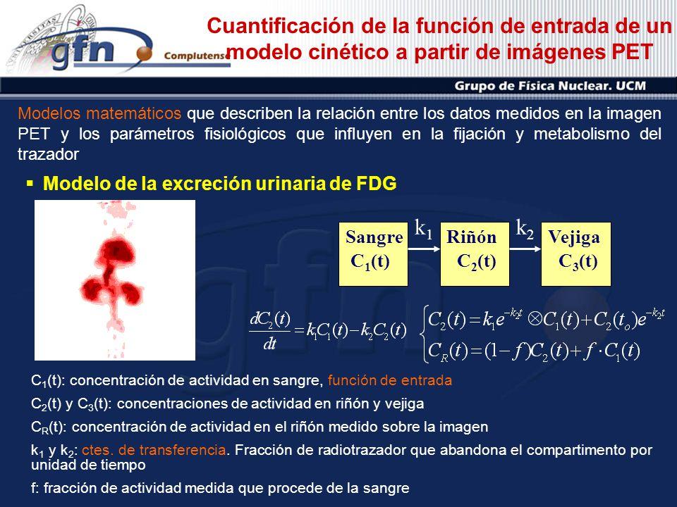 Cuantificación de la función de entrada de un modelo cinético a partir de imágenes PET Modelos matemáticos que describen la relación entre los datos m