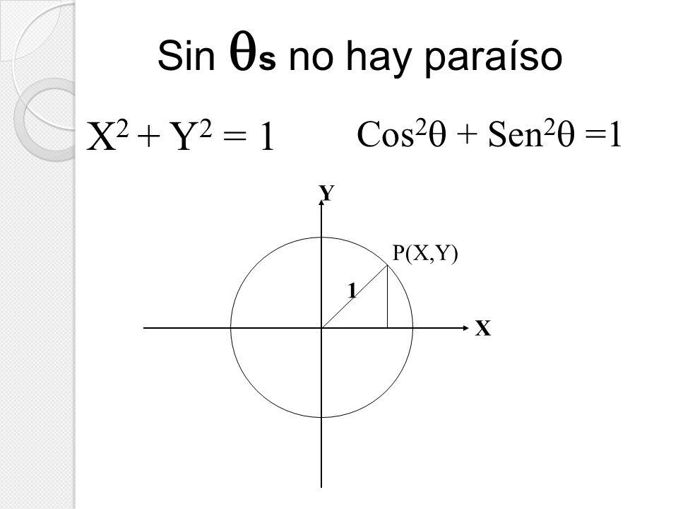 X Y P(X,Y) 1 X 2 + Y 2 = 1 Cos 2 + Sen 2 =1 Sin s no hay paraíso