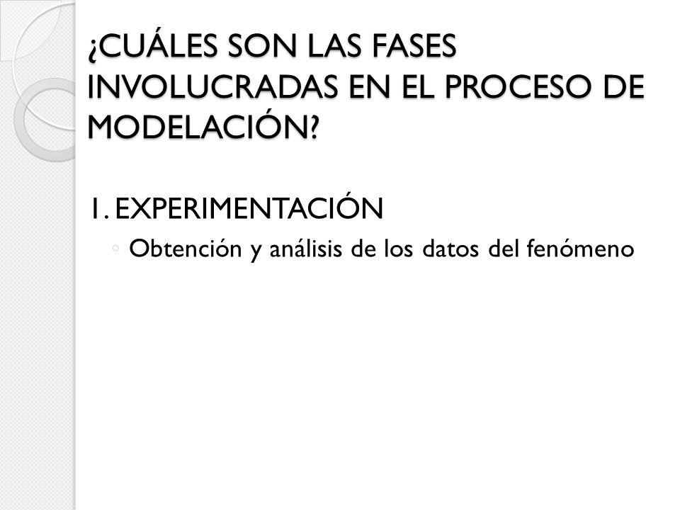 ¿CUÁLES SON LAS FASES INVOLUCRADAS EN EL PROCESO DE MODELACIÓN? 1. EXPERIMENTACIÓN Obtención y análisis de los datos del fenómeno