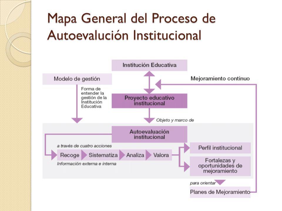 Mapa General del Proceso de Autoevalución Institucional