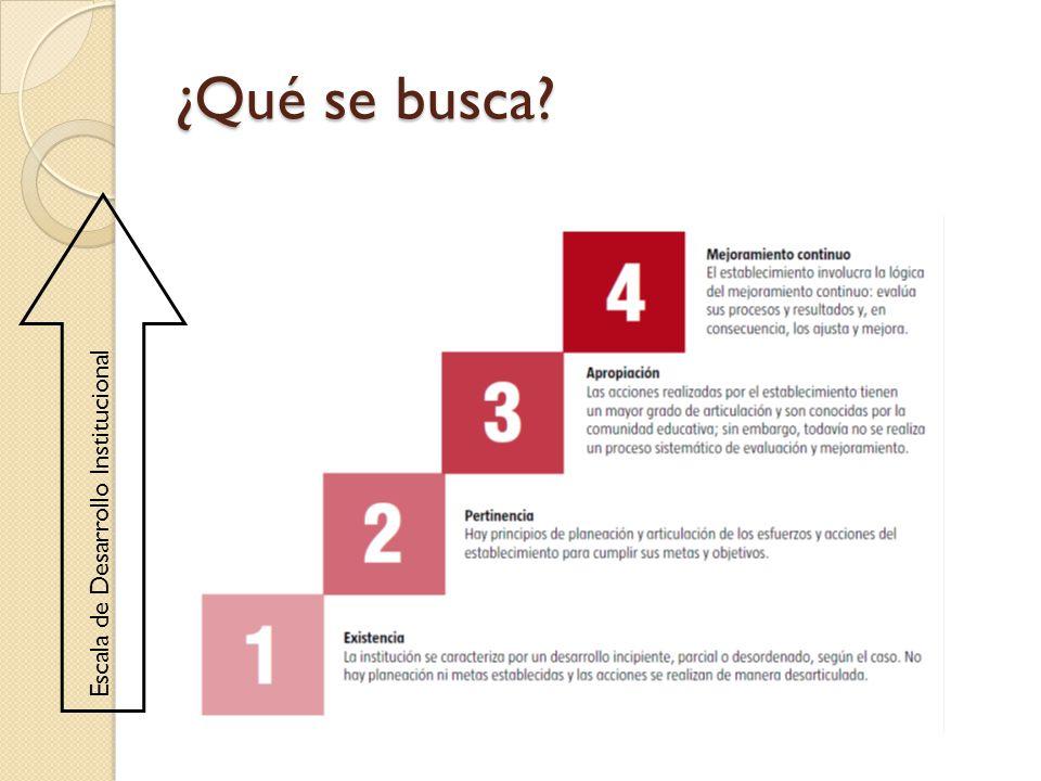 Escala de Desarrollo Institucional ¿Qué se busca?