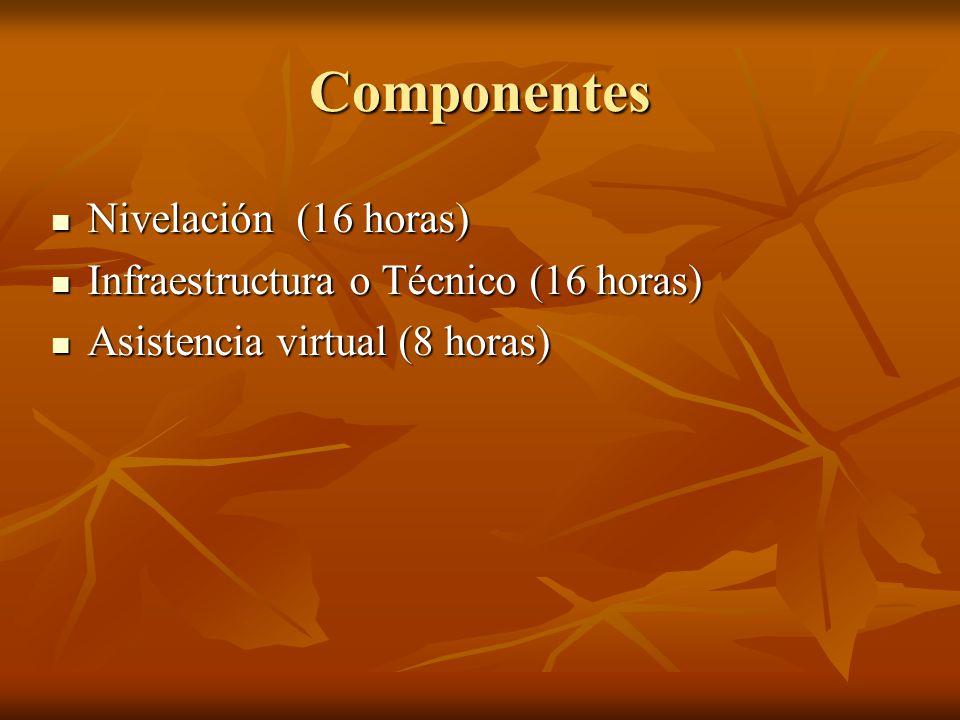 Componentes Nivelación (16 horas) Nivelación (16 horas) Infraestructura o Técnico (16 horas) Infraestructura o Técnico (16 horas) Asistencia virtual (