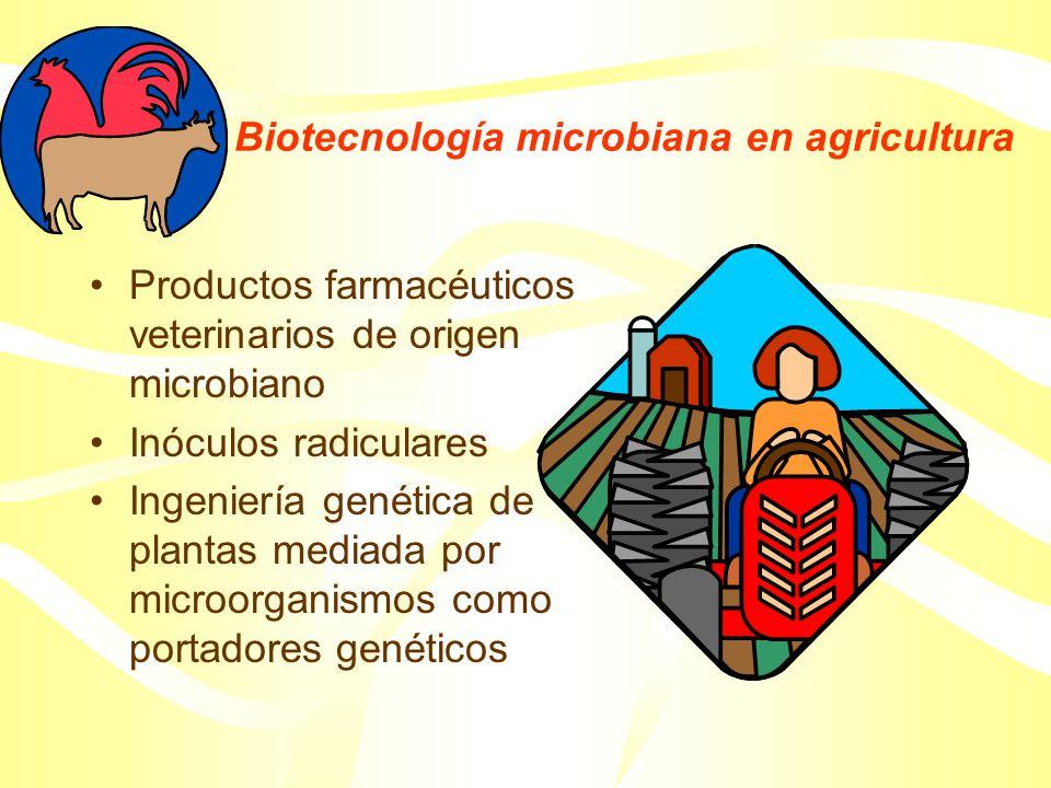 Productos farmacéuticos de origen microbiano Antibióticos Hormonas esteroides Insulina Hormona del crecimiento Linfocinas Péptidos neuroactivos Factores de coagulación sanguínea Activador del plasminógeno tisular Vacunas Anticuerpos monoclonales para diagnóstico y terapia