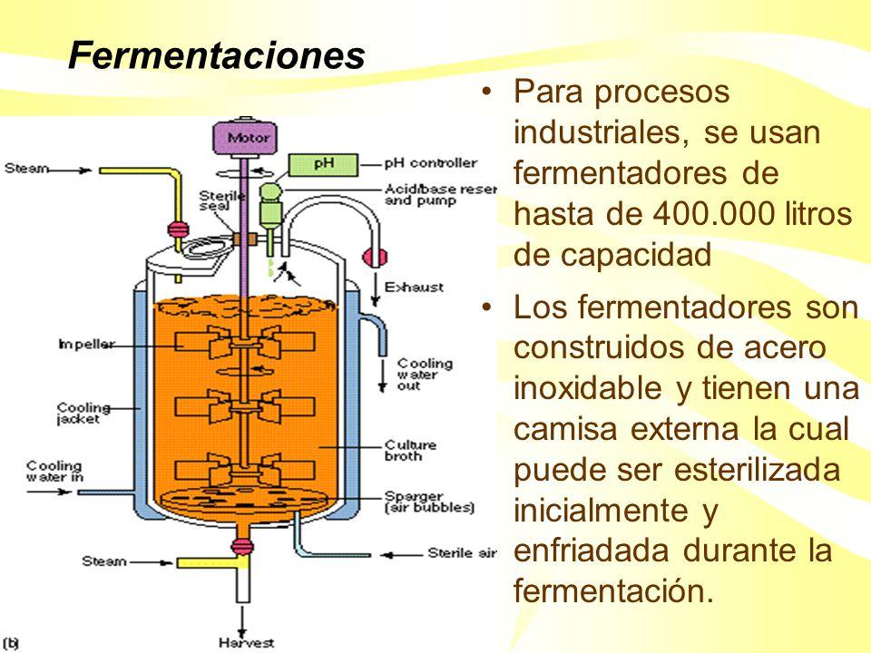Crecimiento y formación de productos industriales Sustrato para el crecimiento CélulasMetabolito primario Sustrato para el crecimiento Células Metabol