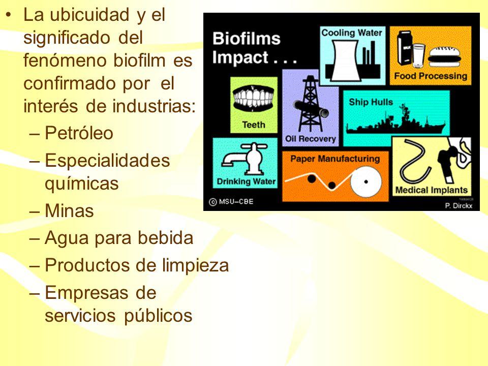Los procesos microbianos sobre superficies también ofrecen oportunidades por sus efectos industriales y ambientales positivos: –Bioremediación en sitios con residuos peligrosos –Biofiltración industrial del agua –Biobarreras para proteger el suelo y las aguas subterráneas de contaminación.