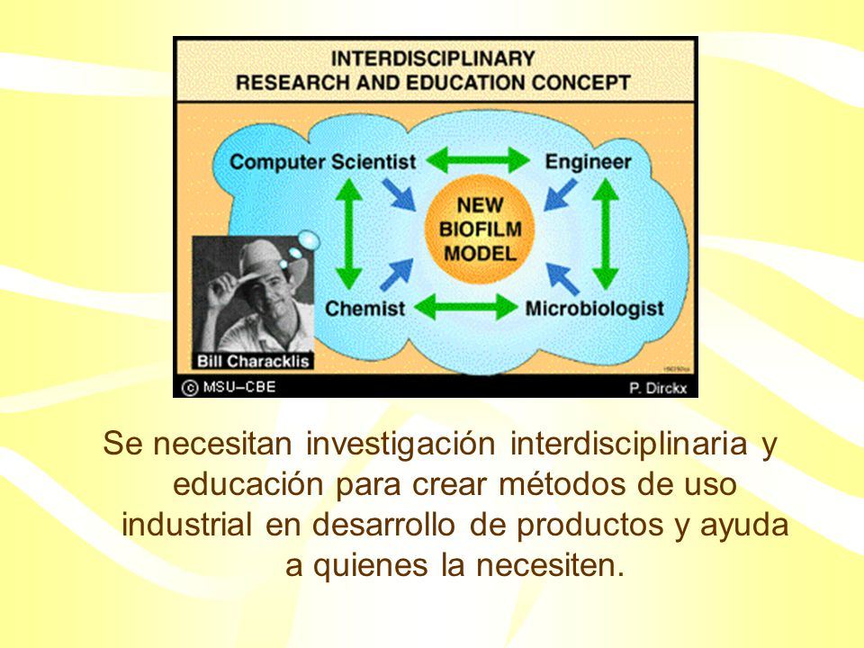 La ubicuidad y el significado del fenómeno biofilm es confirmado por el interés de industrias: –Petróleo –Especialidades químicas –Minas –Agua para bebida –Productos de limpieza –Empresas de servicios públicos