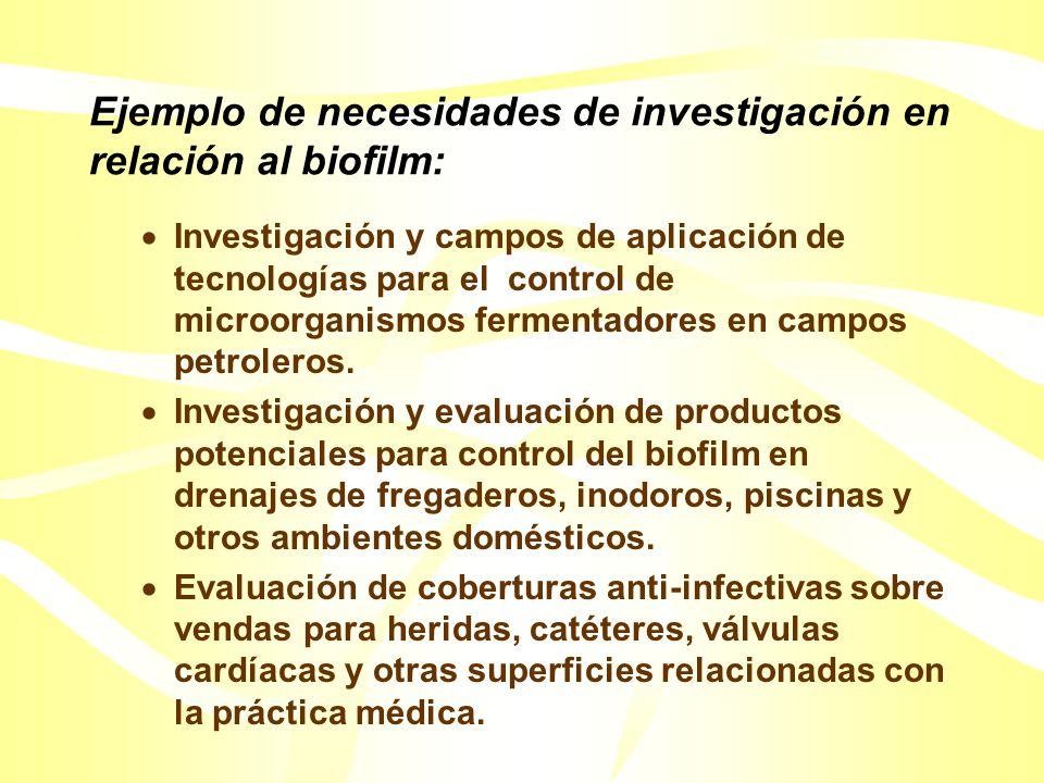 Areas de Investigación Fundamental sobre biofilms: Entendimiento de porqué los microorganismos del biofilm son más dificultosos de matar en comparación con microorganismos suspendidos.