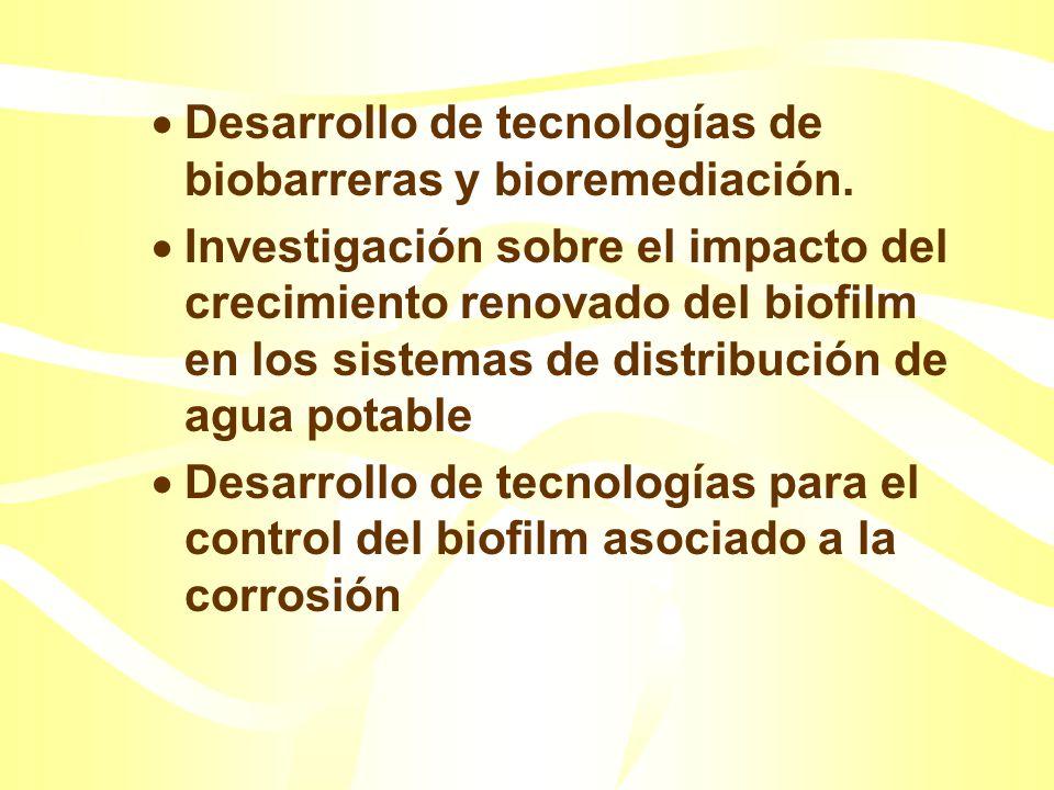 Ejemplo de necesidades de investigación en relación al biofilm: Investigación y campos de aplicación de tecnologías para el control de microorganismos
