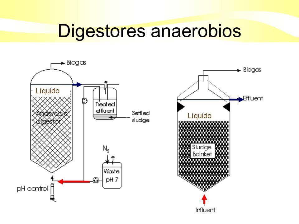 Acetogénesis:bacterias acetogénicas ACIDOS GRASOS DE CADENA LARGA Propiónico, butírico.(volátiles); alcoholes, compuestos aromáticos (benzoato) Metanogénicas: Bacterias metanogénicas reductoras (autótrofos) Hidólisis por exoenzimas de: bacterias fermentativas, Protozoos, levaduras y mohos COMPUESTOS ORGÁNICOS SIMPLES Azúcares, aminoácidos, péptidos Acidogénesis por exoenzimas de: bacterias fermentativas H 2, CO 2 Ácido acético (Acetato ) CO 2 CH 4 Metanogénicas: Bacterias metanogénicas acetogénicas COMPUESTOS ORGÁNICOS COMPLEJOS Proteínas, carbohidratos y lípidos