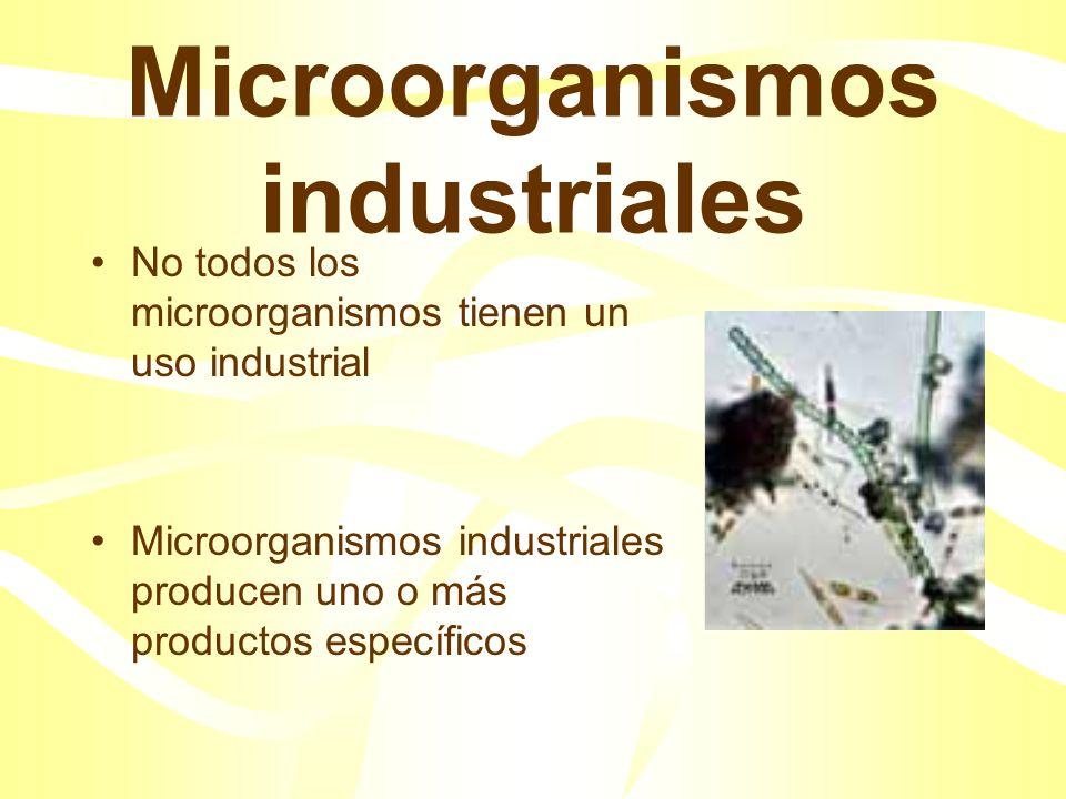 Tecnología microbiana tradicional: Fermentaciones alcohólicas Producción de productos farmacéuticos, aditivos alimentarios, enzimas y sustancias quími